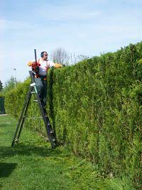 Entretien de jardin casablanca Tarif entretien espace vert particulier